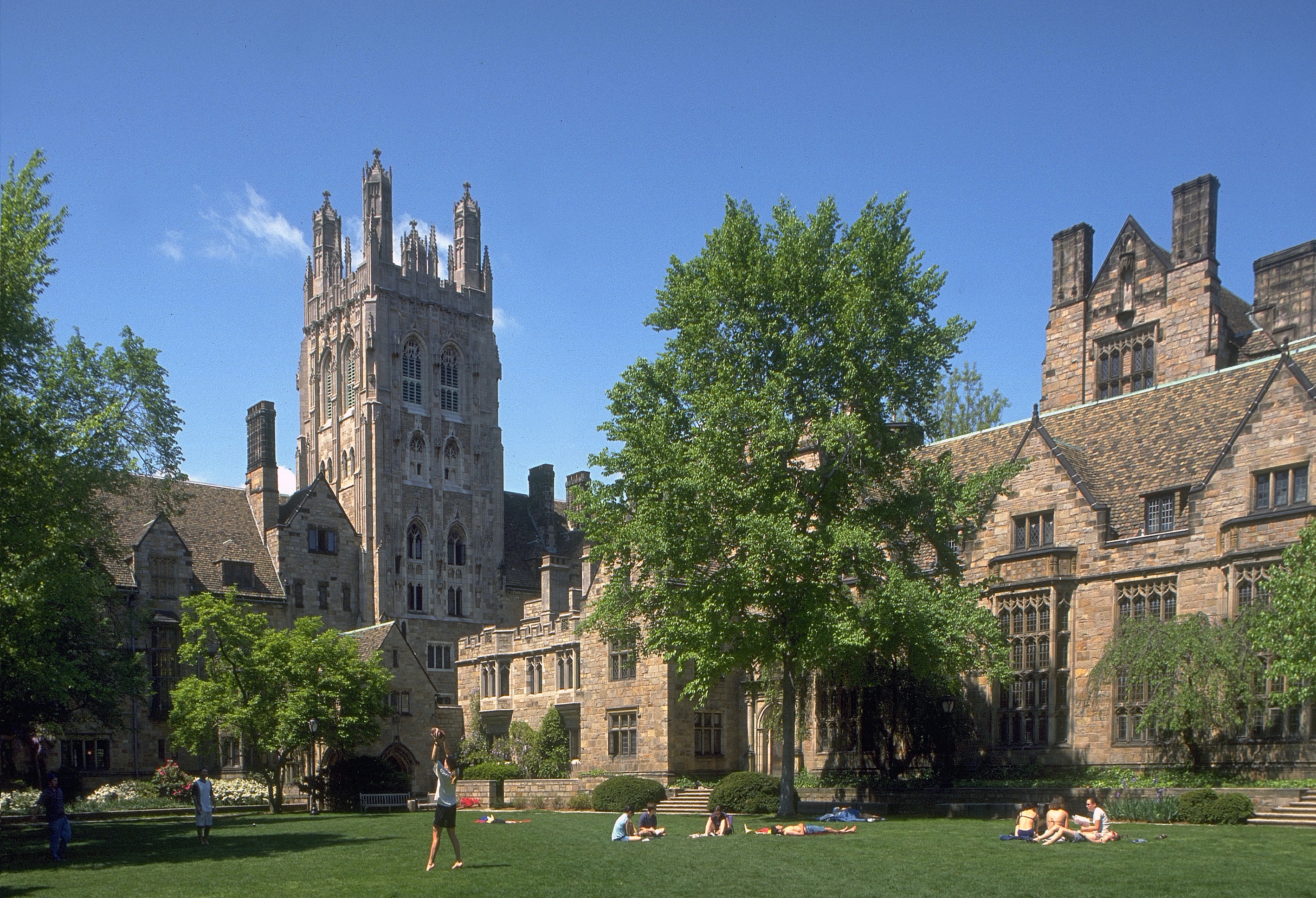 All business listings submitted with a list of hotels and Resorts, city guides, attractions, restaurants, shopping, tour, SPA and all you need to know   New Haven City Guide yale university